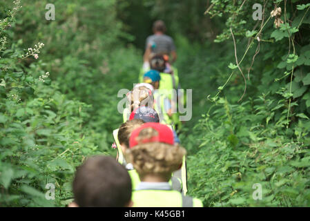 Group of young school children go on a school walk through the woods and countryside. Learning about the environment and getting fit - Stock Image