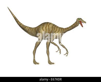 Dinosaurier Gallimimus / dinosaur Gallimimus - Stock Image