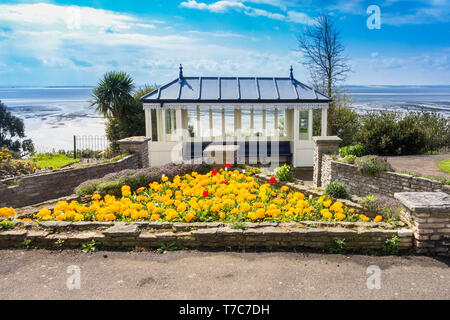 Seaside shelter with Primula flower bed, Westcliff Parade Southend-on-Sea Essex England UK. April 2019 - Stock Image