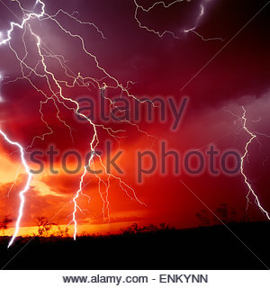 Lightning strikes ground less than 100 feet from camera, near Sells, Arizona at sunset. USA. Monsoon Thunderstorm - Stock Image