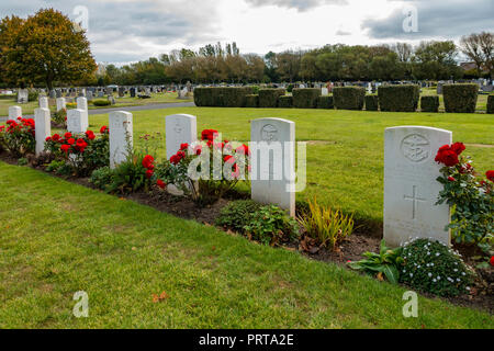 A fine show of red roses along a row of  war graves of servicemen and merchant mariners killed in World War 2 and buried in Acklam cemetary Middlesbro - Stock Image