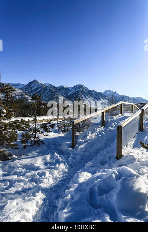 Winter scene in Banff National Park, Alberta Canada - Stock Image