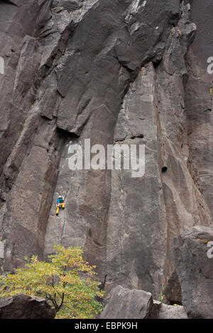 Rock climber. Yosemite Valley, Yosemite National Park, Mariposa County, California, USA - Stock Image