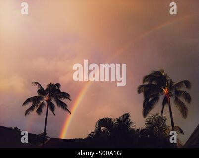 Rainbow after tropical storm - Stock Image