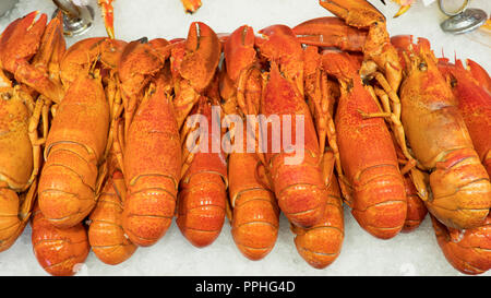 Crustaceans on ice, pile of lobsters known also as Norway lobster, Dublin Bay prawn, langoustine, or scampi, a local delicacy at a fish market, Norway - Stock Image