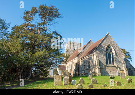 St George's Church, Crowhurst, East Sussex, UK with a famous ancient yew tree, reputedly well over a 1000 years old, seen on the left of the picture. - Stock Image