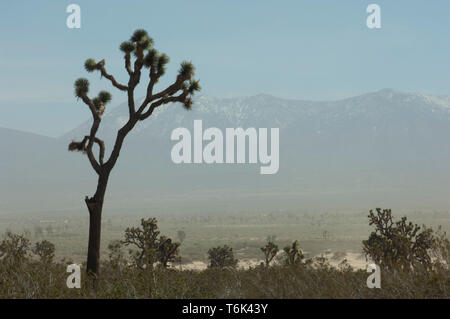 San Gabriel Mountains obscured by a Mohave Desert sandstorm, Big Rock Creek Wildlife Sanctuary, California. Digital photograph - Stock Image