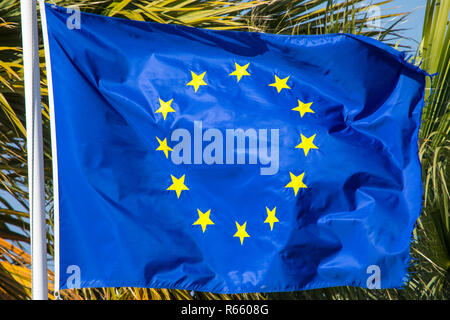 The flag of the European Union. - Stock Image