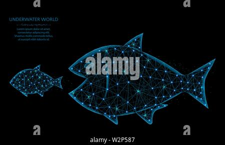Big fish eat small low poly model, predator and prey in polygonal style, underwater world wireframe vector illustration made from points and lines on - Stock Image