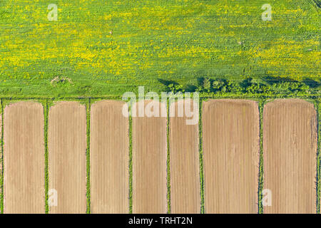 Plowed agricultural field and green meadow aerial top view. Natural background and texture - Stock Image