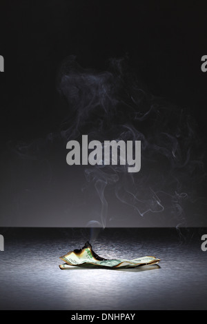 A single burnt banknote with trails of smoke. - Stock Image