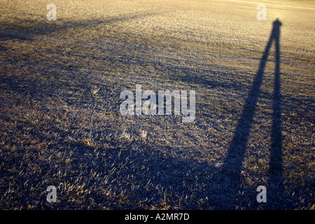 Someone's long shadow on the grass - Stock Image