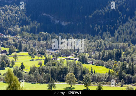 The meadow and trees are seen beside a steep hill that is overgrown with dark forest. The landscape as seen from - Stock Image