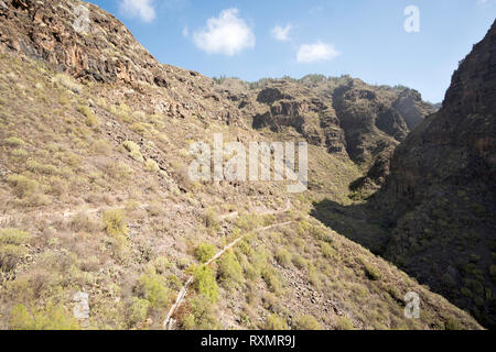 Groups of walkers follow the footpath along the gorge called the Barranco del Infierno, Adeje, Tenerife. - Stock Image
