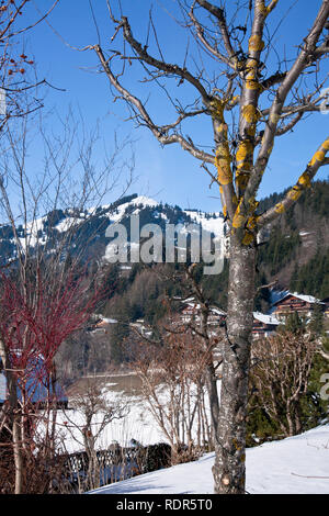 Landscape of Gstaad in Switzerland, with snow in winter. - Stock Image