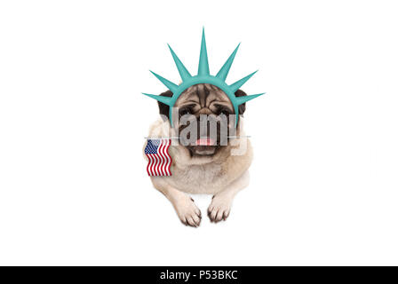 smiling pug puppy dog holding American flag, hanging on white banner, wearing lady Liberty crown, isolated - Stock Image