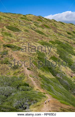 Trail on Koko Head, Koko Head District Park, Hawaii Kai, Oahu, Hawaii, USA - Stock Image