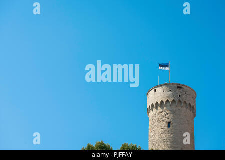 Estonia flag tallinn, view of the flag of Estonia on top of the Pikk Hermann tower on Toompea Hill in the center of Tallinn, Estonia. - Stock Image