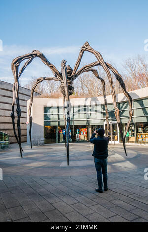 maman sculpture is a giand spider located at crystal bridge museum in bentonville ar - Stock Image