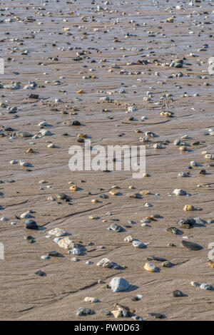 Pebbles and small rocks stranded on beach after low-tide. - Stock Image