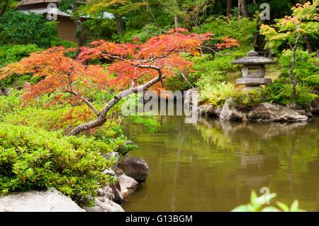 Japanese lantern near the pond - Stock Image