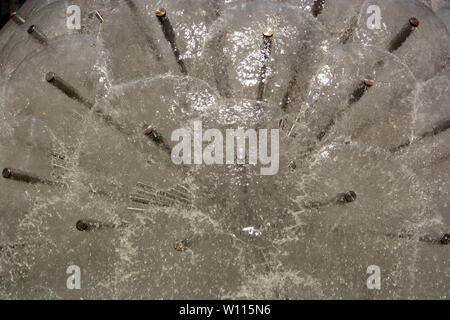 dandelion fountain, part of a dandelion fountain illuminated by the midday sun shallow DOF - Stock Image