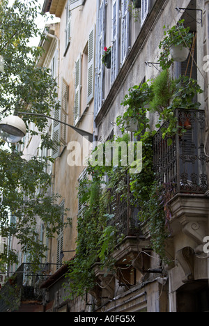 Window Balcony and Flowerpots in Antibes, Cote d'Azure, South of France - Stock Image
