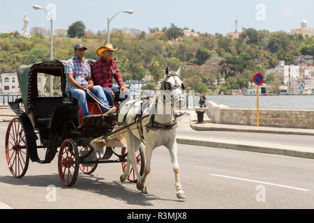 Cuba, Havana, Old Havana. Horse and buggy. Credit as: Wendy Kaveney / Jaynes Gallery / DanitaDelimont.com - Stock Image