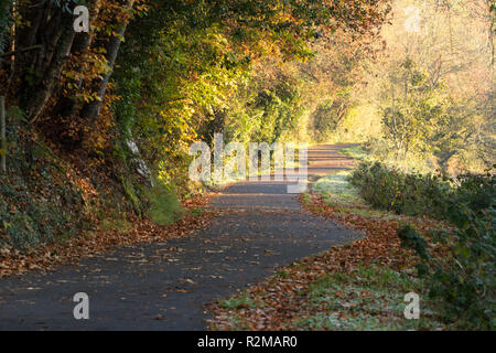 Beautiful autumn colours on a cold frosty morning on the Lagan towpath in South Belfast, Northern Ireland. - Stock Image