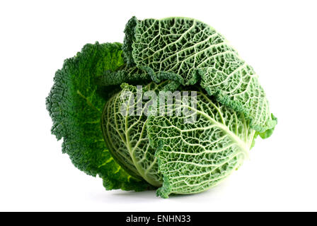 Savoy cabbage on white background close up. - Stock Image