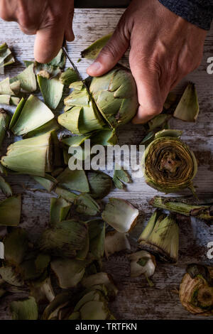closeup of a caucasian man cutting with a kitchen knife some raw fresh artichokes, on a white rustic wooden table - Stock Image
