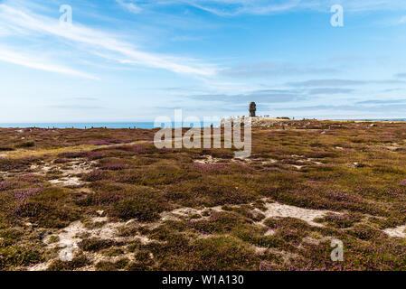 Point of Pen-Hir (Pointe de Pen-Hir) and the  monument to the Bretons of Free France - Stock Image