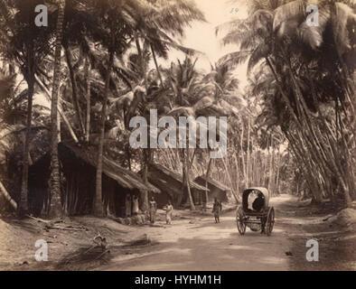 Charles T Scowen Landscape in Ceylon 1870s - Stock Image