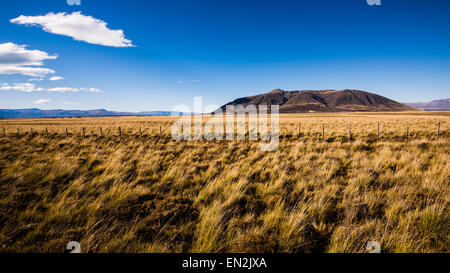 Patagonian Steppe, Santa Cruz, Argentina - Stock Image