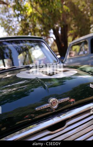 British Racing Green Morris Mini Cooper S, a classic British motor car. - Stock Image