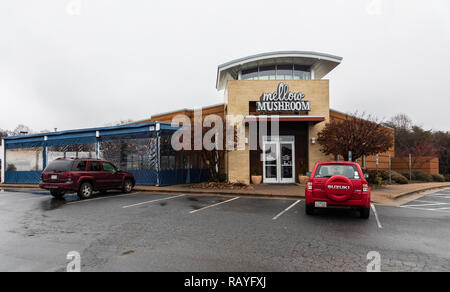 HICKORY, NC, USA-1/3/19:  The Mellow Mushroom is a chain of restaurants specializing in pizza, sandwiches, salads, and beer. - Stock Image