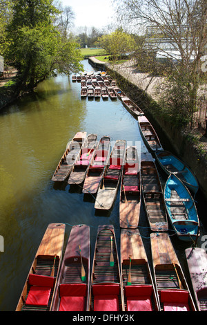 Punts on the River Cherwell, Oxford, Oxfordshire, UK. Oxford Botanical Gardens on the Right. - Stock Image