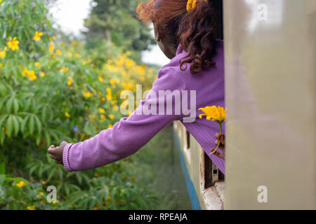 A young girl picks flowers out of the window of a moving train. - Stock Image