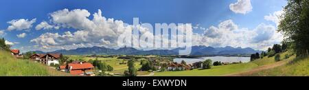 Castle Neuschwanstein, Ammergau Alps, Bavaria, Germany, Europe - Stock Image
