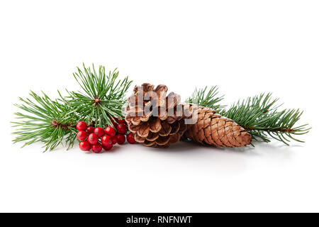 Christmas decoration of holly berry and pine cone on white background. - Stock Image