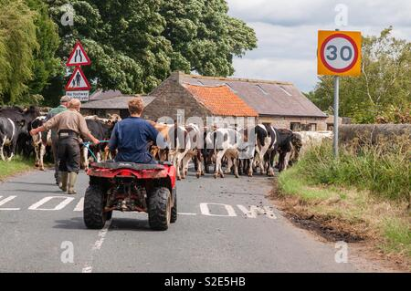 Gridlock in the Dales - Stock Image