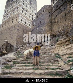 Young shepherd Hajjara Yemen - Stock Image