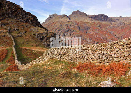 Long meandering drystone wall with Langdale Pikes beyond from Lingmoor Fell, Langdale, Lake District, Cumbria, UK - Stock Image