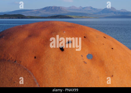 A close up view of a large rusty iron sea float left on Badentarbat Beach, Coigach, Scotland with the sea and mountains in the background - Stock Image