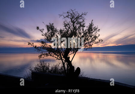 Beautiful autumn outline of tree centered with sunset purple sky and wispy clouds on Lake Ohrid, Macedonia , flat lake effect from long exposure - Stock Image