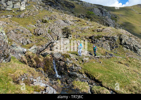 Two Walkers Making Their Way up Dovedale Towards Dove Crag with the Ridge of Hartsop Above How on the Skyline, Lake District, Cumbria, UK - Stock Image