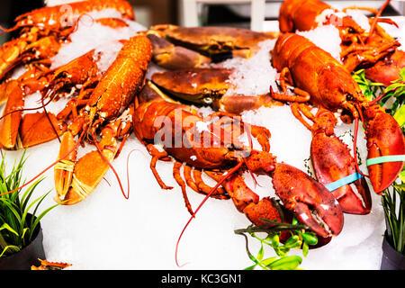 Lobster, lobsters, fresh lobsters, fish shop lobster, lobsters in fish shop, lobster display, lobsters displayed, - Stock Image
