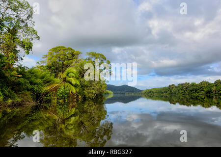 Tranquil view of the Daintree River, Daintree National Park, Wet Tropics, Far North Queensland, FNQ, QLD, Australia - Stock Image