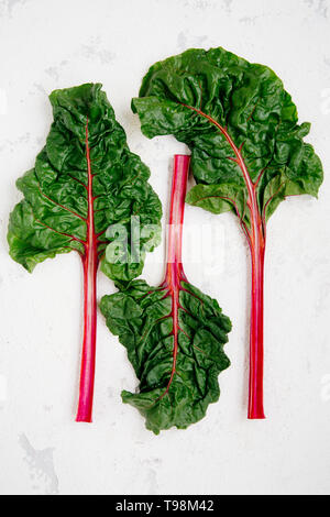 Swiss chard leaves on a rugged white background - Stock Image