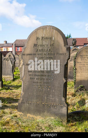 Liverpool Kensington Deane Road Cemetery Old Hebrew Congregation opened 1837 graves restored 2012 National Lottery gravestone Amelia Neiman died 1885 - Stock Image